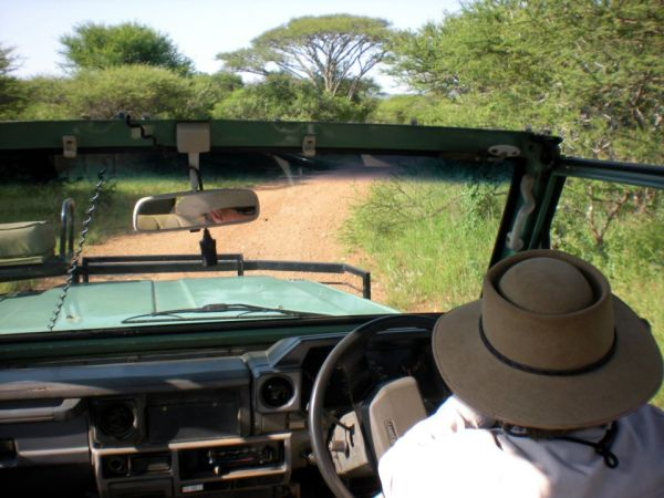 Lisa, my guide for the day, driving me through Polokwane Game Reserve, South Africa.